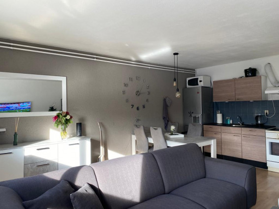 Instapklaar 2 kamer appartement met gerenoveerde badkamer